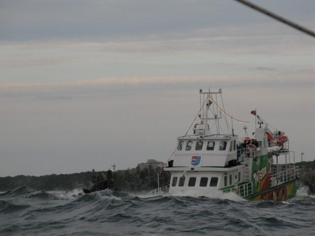 Ausflugsschiff, dessen Bug in der Hafeneinfahrt von Kolobrzeg vollständig in einer Welle verschwindet