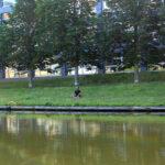 Ein Mann sitzt meditierend auf der Wiese am Ufer der Spree