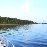 Ankerplatz bei Stralsund - bewaldetes Ufer