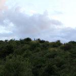 Menschen auf dem Aussichtspunkt am Dornbusch auf Hiddensee